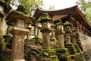 japanische steinlaternen weisen den weg zum teehaus