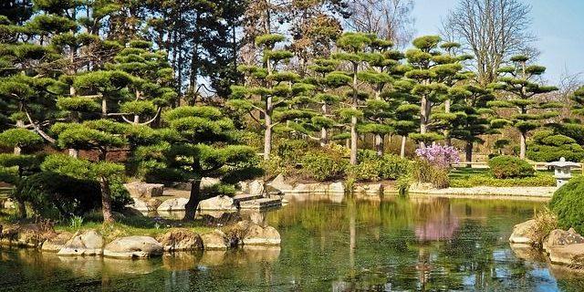 Bedeutung U0026 Elemente Teich Im Japanischen Garten Anlegen