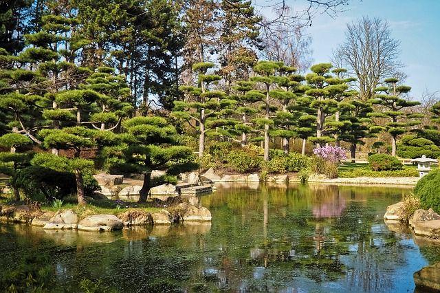 Teich Im Japanischen Garten Anlegen